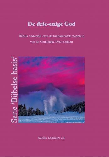 De drie-enige God (Paperback)