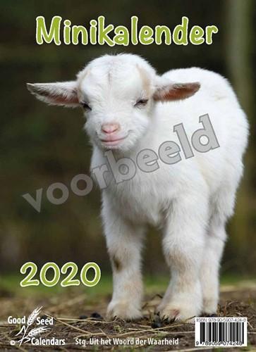 Minikalender 2020 met mooie afbeeldingen (Kalender)