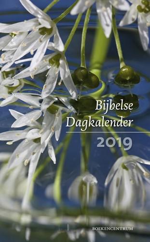 Bijbelse dagkalender 2019 (Paperback)