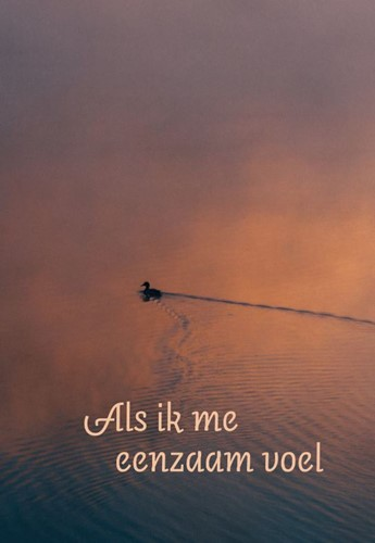 Als ik me eenzaam voel (Paperback)