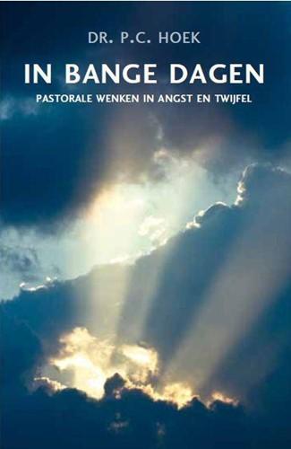 In bange dagen (Paperback)