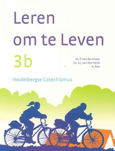 Lesboek 3b (Paperback)
