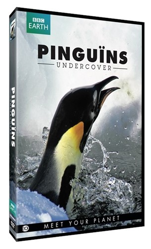 Pinguins Undercover (EO-BBC Earth DVD) (DVD)