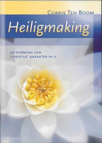 Heiligmaking (Paperback)