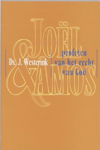 Joel en Amos (Paperback)