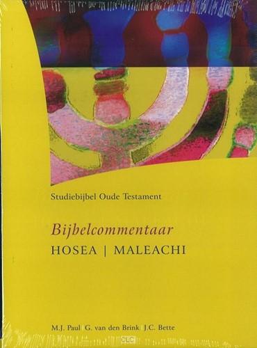 12 (Hardcover)
