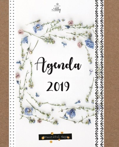 Majestically agenda 2019 (Paperback)
