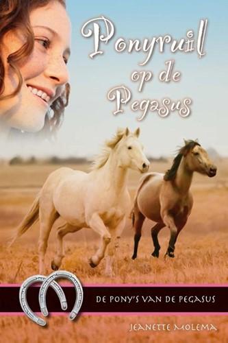 Ponyruil op de Pegasus (Hardcover)