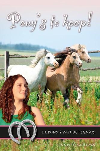 Pony's te koop! (Hardcover)
