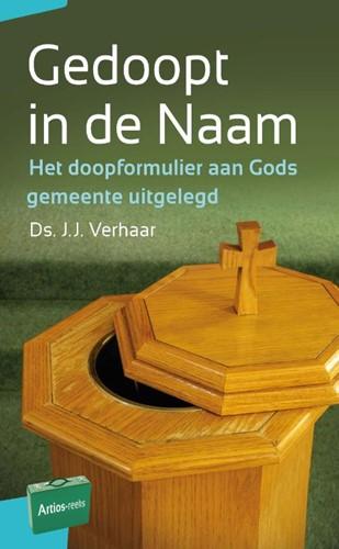 Gedoopt in de Naam (Paperback)
