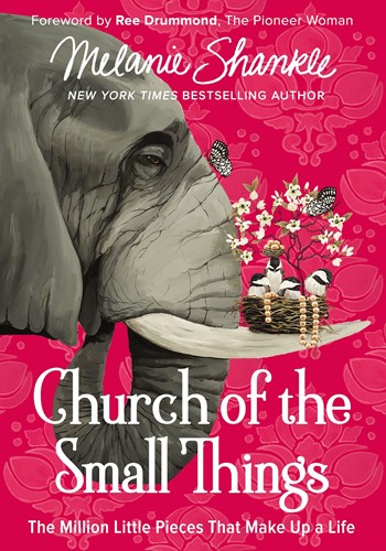 Church of the small things (Boek)