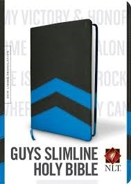 NLT slimline bible for boys (Boek)