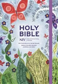 NIV journaling bible colour hardback (Boek)