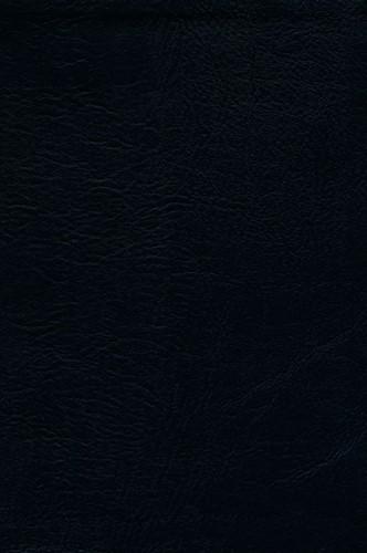 KJV giant print bible (Leer/Luxe gebonden)