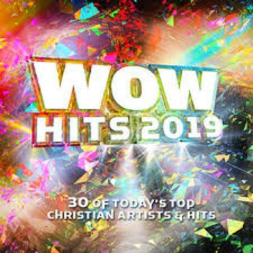 WOW Hits 2019(2CD) (Product)