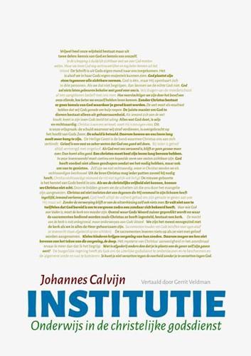 Institutie (Paperback)