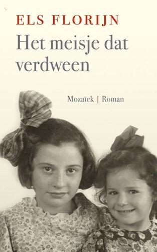 Het meisje dat verdween (Boek)