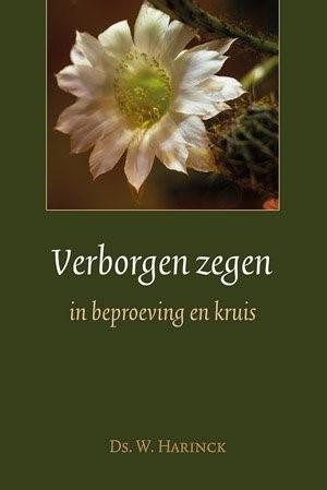 Verborgen zegen in beproevingen en kruis (Hardcover)