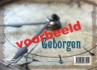 Geborgen (Boek)