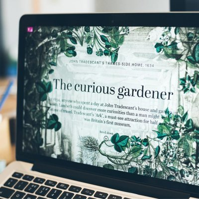 A laptop screen showing an immersive screen witht the headline that reads: The Curious Gardener.