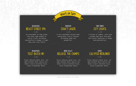 Branding for Bison Beer.