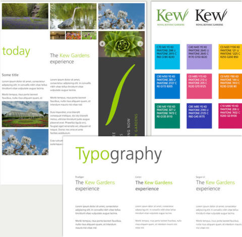A style guide of colour and typography.