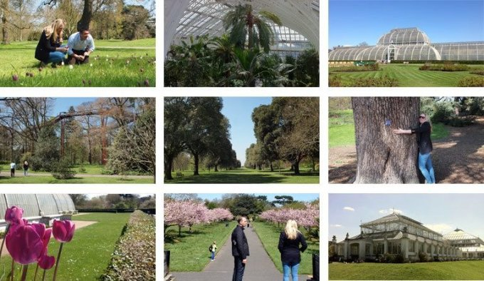 A montage of pictures of the grounds of Kew Gardens on a sunny day.