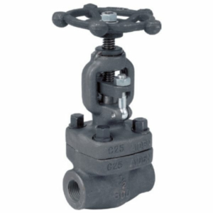"1"" A105 Carbon Steel Standard Globe Valves Screwed BSPP Handwheel Class 800 API 602 API 598"