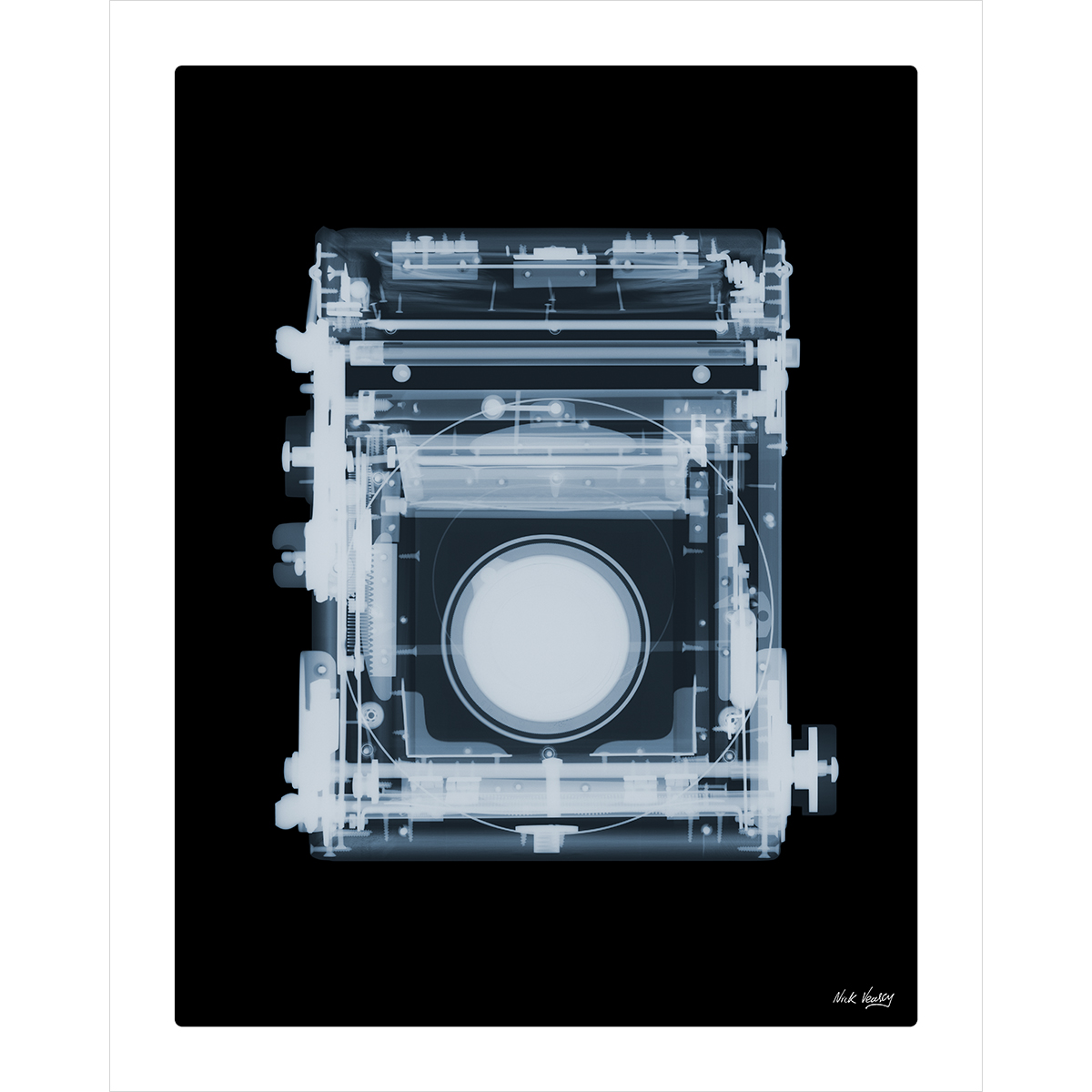 X-ray print of 1900s Marion and Co. Soho Reflex camera by Nick Veasey