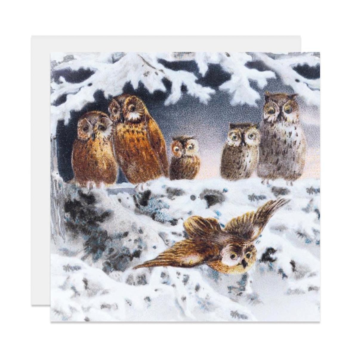 Owl Christmas card pack