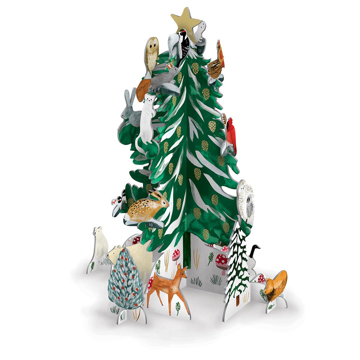 Christmas conifer advent calendar