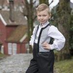 Ludvig_solv_2