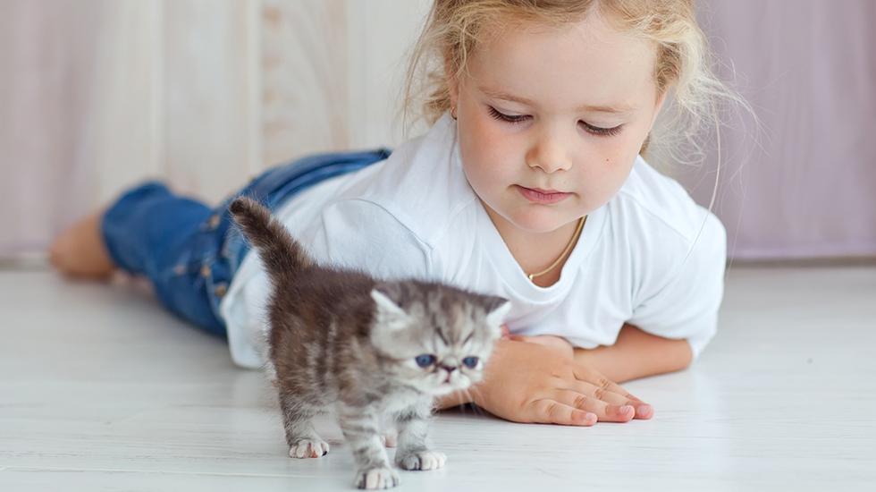 Illustrasjonsfoto: Shutterstock