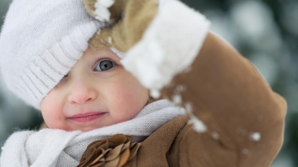 Alle foto: Shutterstock