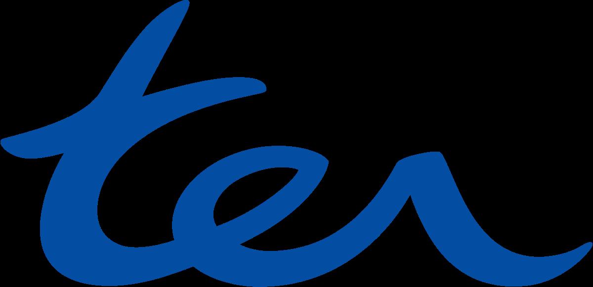 TER_Icona