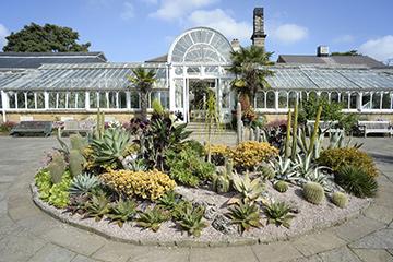 Bonatanical gardens by train