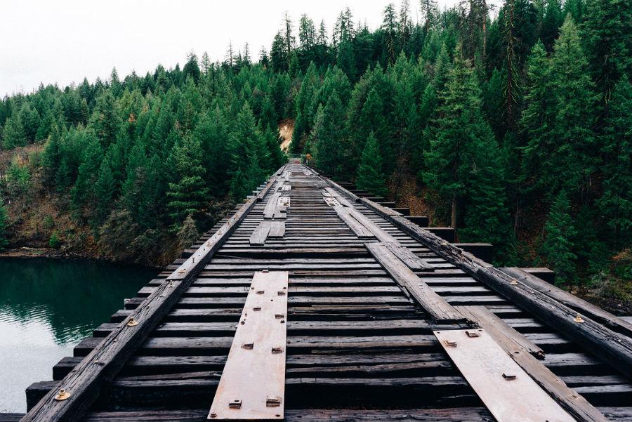 binari treno foresta