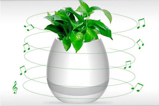 Maceta muscial táctil con altavoz bluetooth ¡Apto para plantas!