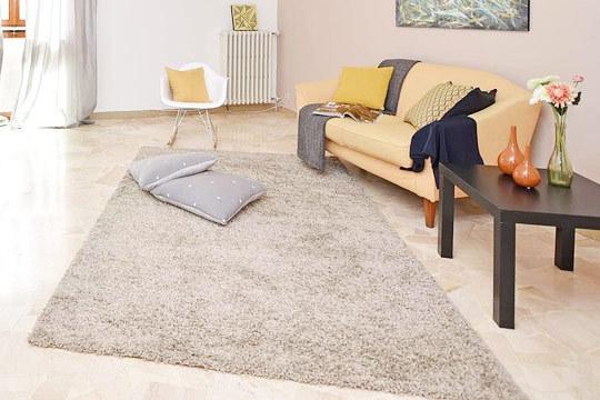 Limpiezas delux limpieza de alfombras con servicio a domicilio colectivia - Limpieza de alfombras barcelona ...