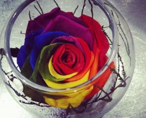 Livraison bouquet Myans fleuriste D'une fleur à l'autre
