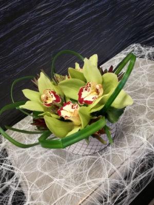 Envoi de bouquet de fleurs Lille  Racine Carrée