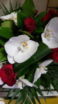 Commande fleur bouquet Le Plessis-Robinson fleuriste L'ile aux Marguerites