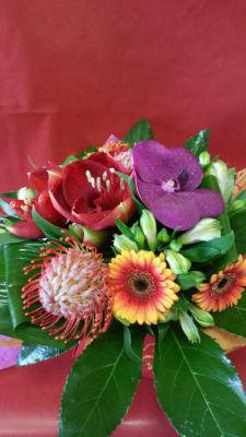 Faire livrer bouquet de fleurs Le Plessis-Robinson  L'ile aux Marguerites