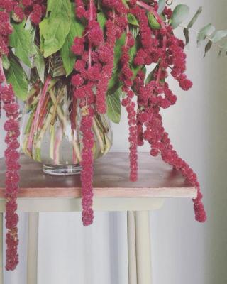 Bouquet Villeneuve-De-La-Raho fleuriste créateur L'Herbe Folle Fleuriste