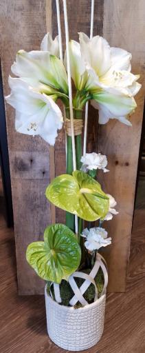 Faire livrer composition florale La Salvetat-Saint-Gilles artisan fleuriste Gentlemen Artisan Fleuriste