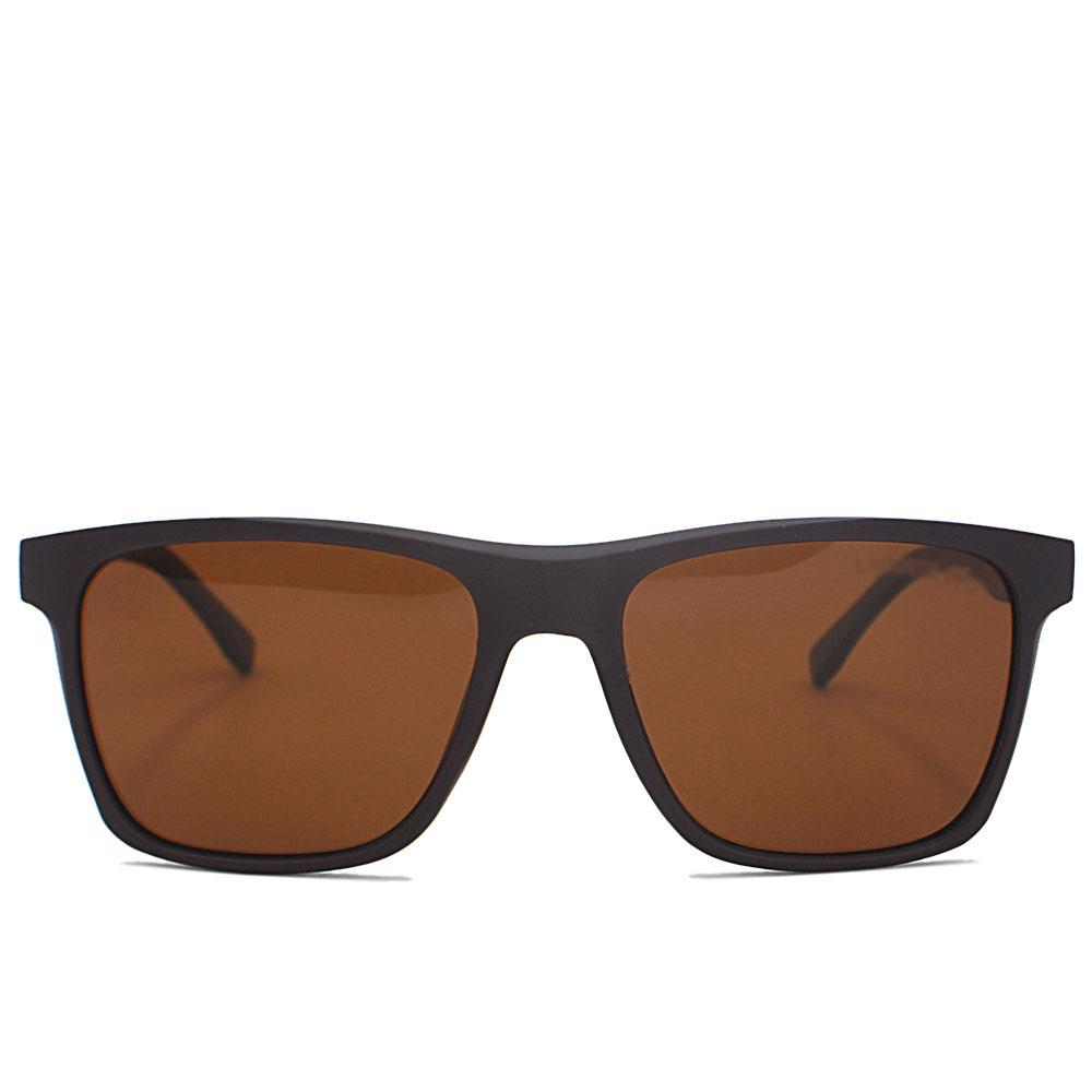 Brown Wide FWayfarer Sunglasses