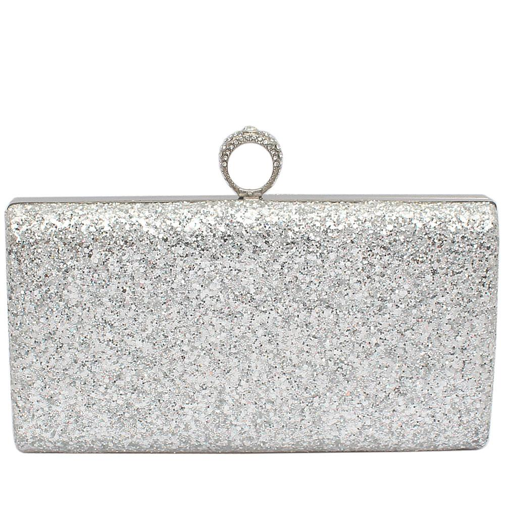 Large Silver Gilter Clutch Purse