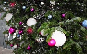 Sky Garden London Fenchurch Christmas Tree