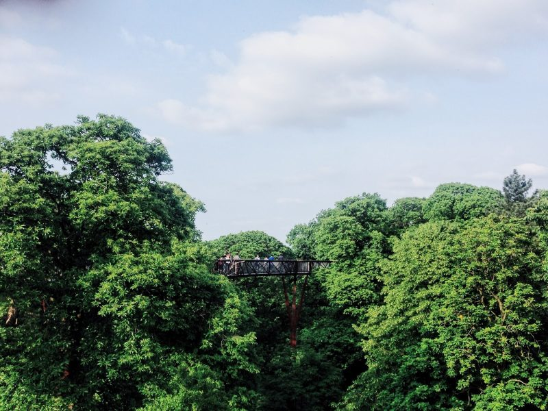 Visiting Kew Gardens