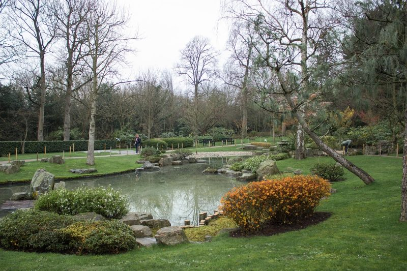Holland Park | GOING OUT